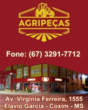 Agripeças 300x440